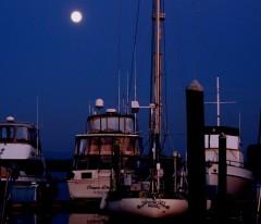 moonilt night